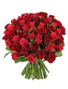 Romantic & Perfection - 50 Roses Bouquet