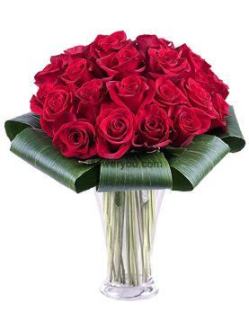 Addicted To Love 25 Red Roses