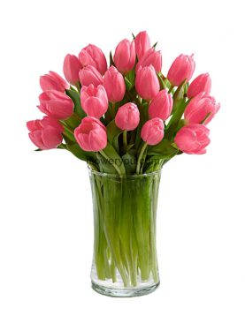 20 Pink Prelude Tulips Bouquet