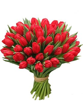 50 Red Tulips Gorgeous Bouquet