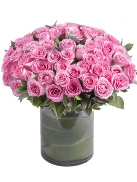 75 Pink Roses Luxurious Bouquet