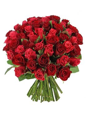 Romantic & Perfection - 50 Roses Bouquet