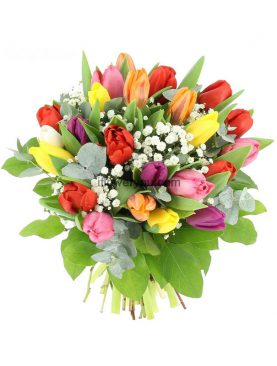 Bouquet of Tulips & Gypsophile