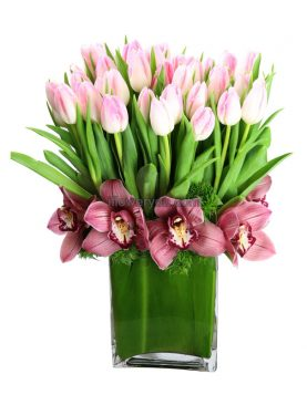 Queen of hearts - Pink Tulips Crowned with Orchids