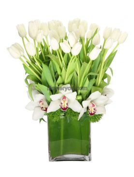 Queen of hearts - White Tulips Crowned with Orchids
