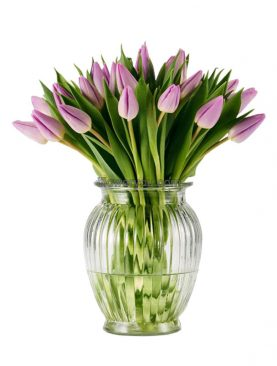 20 Lilac Purple Tulips Bouquet