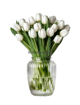 20 White Hot Tulips Bouquet